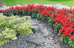 Záhrada s charakterom
