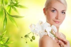 Koža a kožné choroby