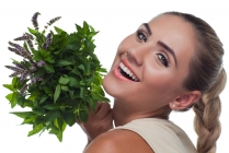 Liečivé byliny