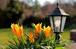 Osvetlenie terasy, záhrady a domu