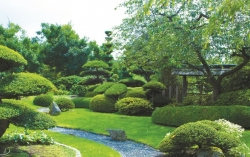 Záhradná idylka