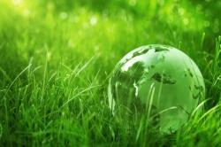 Dajte zelenú zelenej