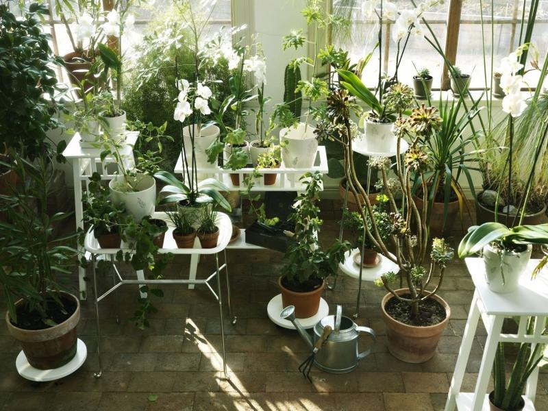 Zimná záhrada z dreva a iných materiálov