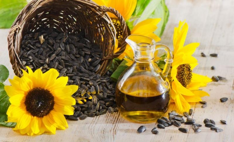 Slnečnicový olej redukuje cholesterol v krvi